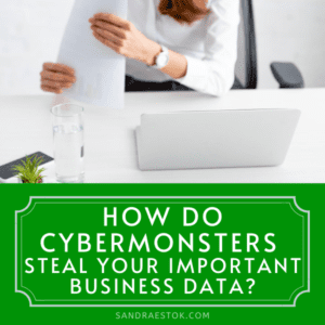 How Do Cybermonsters Steal Your Important Business Data Sandra Estok Cybersecurity, Way2Protect Happily Ever Cyber