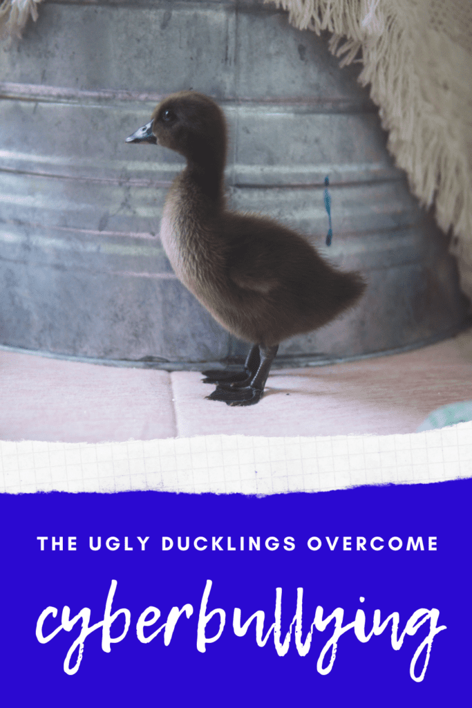 The Ugly Ducklings Overcome Cyberbullying