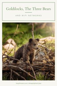 Goldilocks, The Three Bears, and WiFi Networks